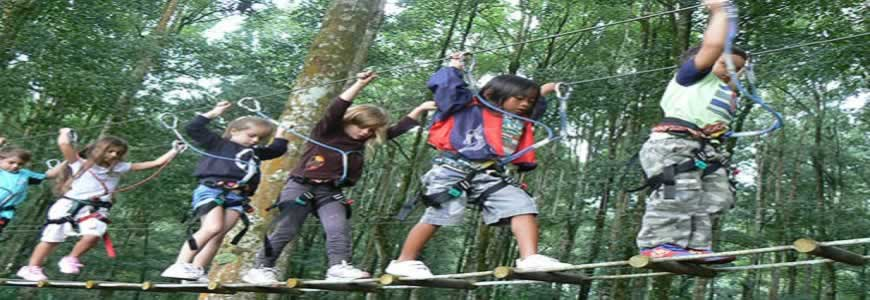 Bali Treetop Adventure Tour Bedugul Tree Top Park