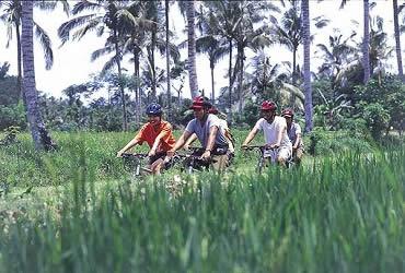 Bali Jatiluwih Rice Paddy Cycling Tour | Bali Cycling Tours | Bali Golden Tour
