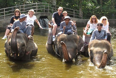 Bali Safari Elephant Ride | Bali Elephant Ride Tour | Bali Golden Tour