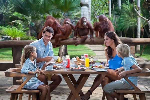 Bali Zoo Park | Breakfast with Orangutan | Bali Golden Tour