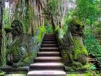 GATE UBUD MONKEY FOREST | SACRED MONKEY FOREST | BALI INTEREST PLACE | BALI GOLDEN TOUR