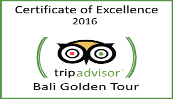 TripAdvisor Certificate of Excellent 2016 - Bali Golden Tour