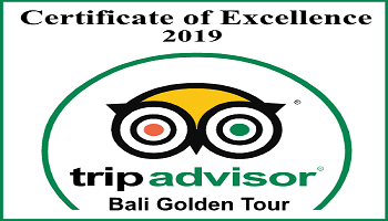TripAdvisor Certificate of Excellent 2019 - Bali Golden Tour