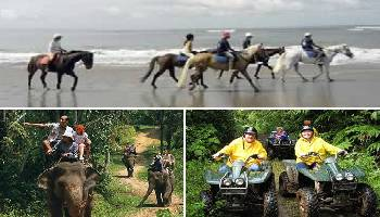 Bali Horse Riding, Elephant and ATV Ride Tour | Bali Triple Activities Tour Packages | Bali Golden Tour